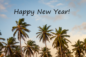 New Year Palms
